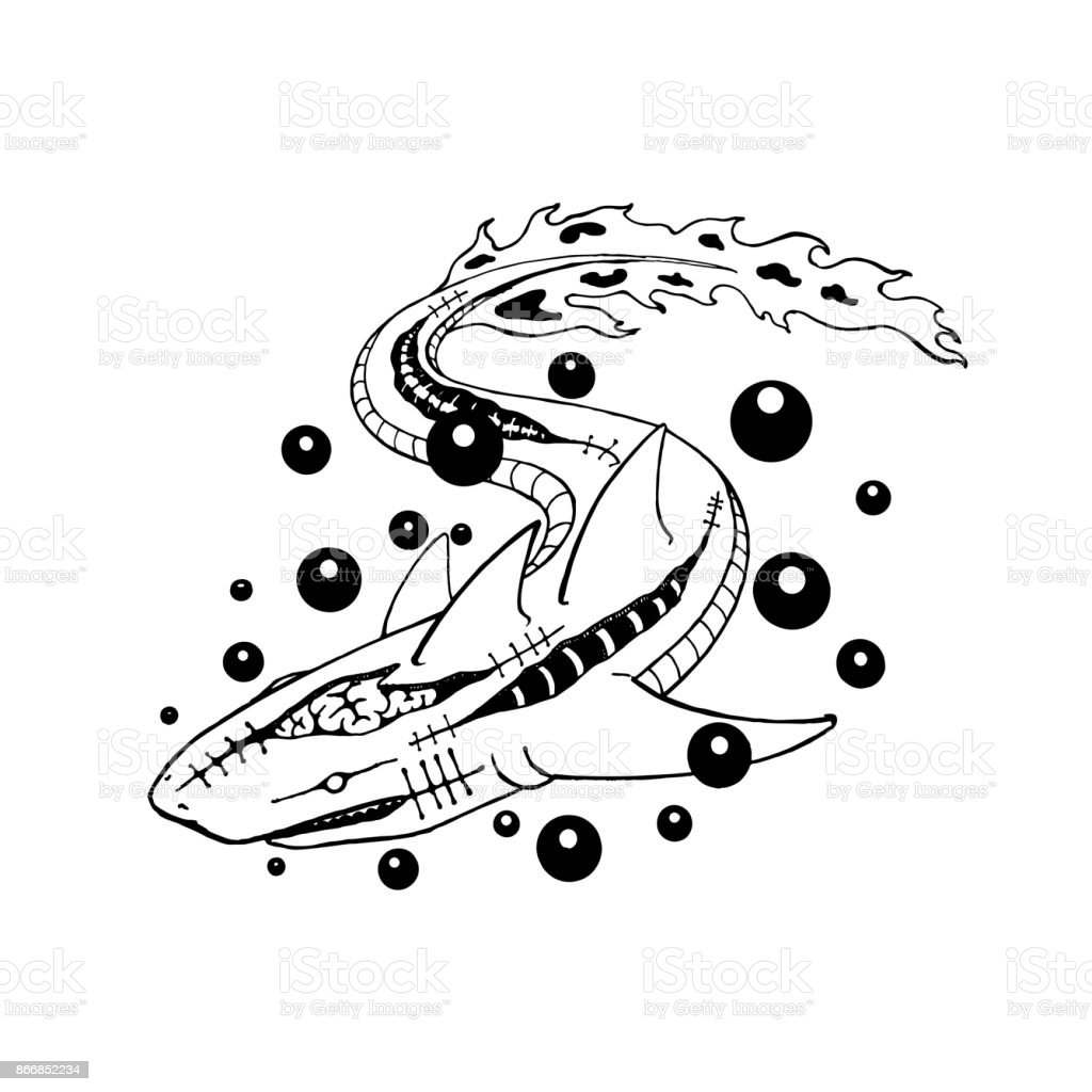Vector Drawing Lines Questions : Shark mutate to zombie line art drawing vector