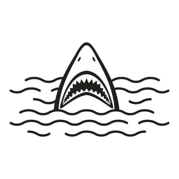 Shark open mouth Ocean Sea vector illustration Shark open mouth Ocean Sea vector illustration animal fin stock illustrations