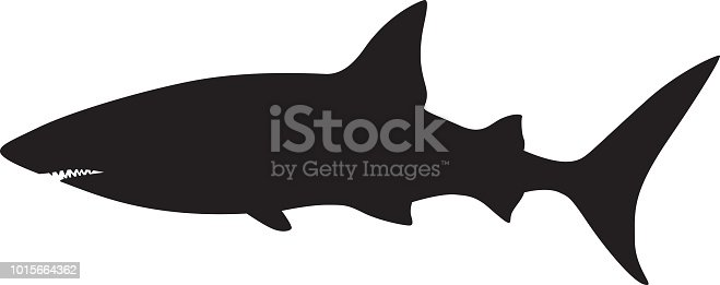 Vector illustration of a swimming shark silhouette.