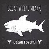 Shark silhouette vintage label, Hand drawn sketch, grunge textured retro badge, typography design t-shirt print, nautical vector illustration on chalkboard background