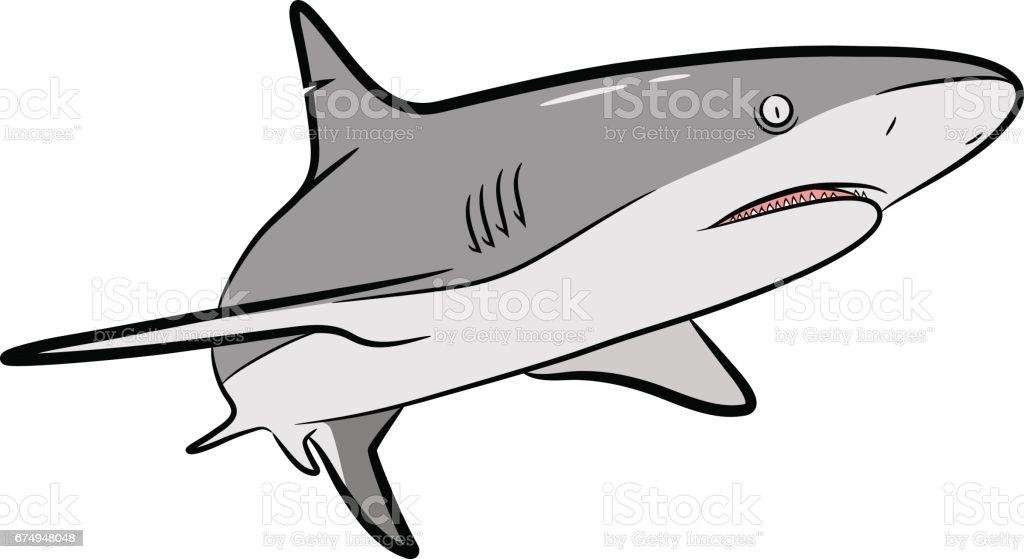 Shark Vector Cartoon A hand drawn vector Cartoon Illustration of a grey shark Animal stock vector