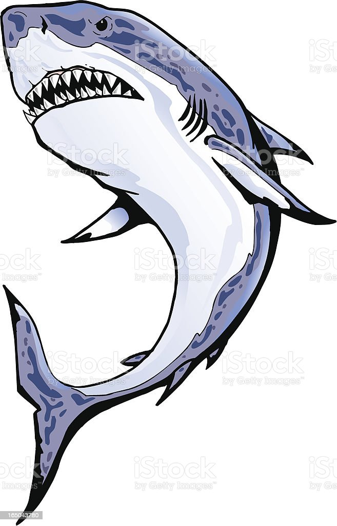 Shark royalty-free stock vector art