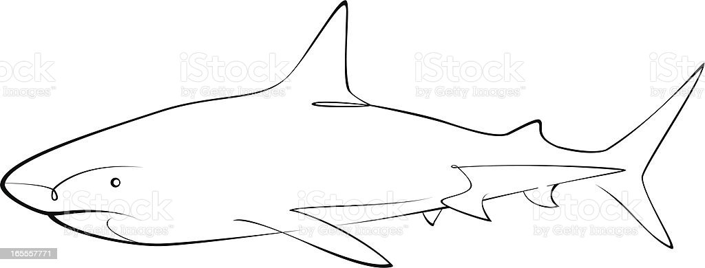Shark royalty-free shark stock vector art & more images of animal