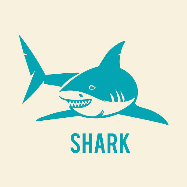 Shark - vector illustration Great white shark logo sign emblem vector illustration on white background. great white shark stock illustrations