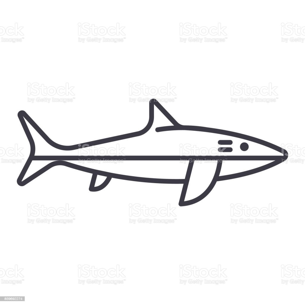 shark vector line icon, sign, illustration on background, editable strokes vector art illustration