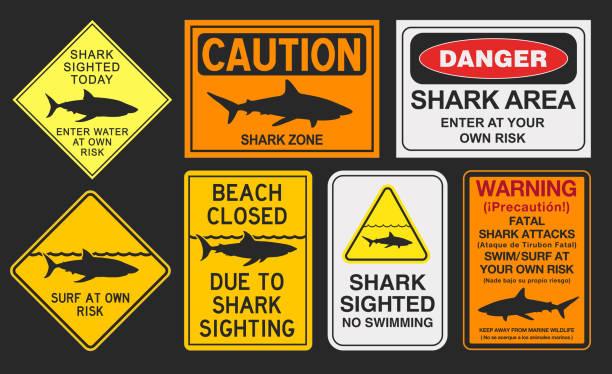 illustrazioni stock, clip art, cartoni animati e icone di tendenza di shark warning signs - cartello chiuso