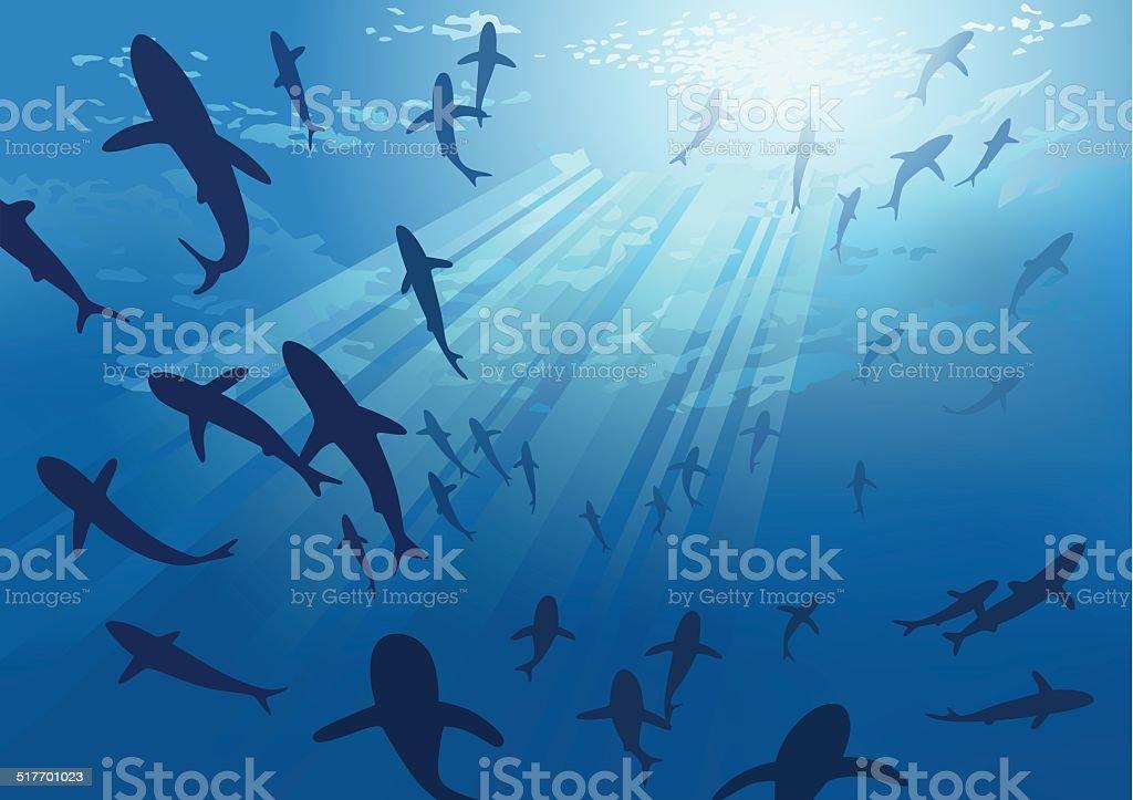 Requins, DES ESPÈCES EN VOIE DISPARITION - Illustration vectorielle