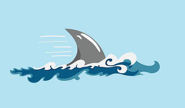 shark's fin cartoon-style moving shark's fin in ocean waves animal fin stock illustrations