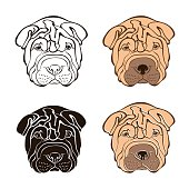 Sharpei face. Vector set.