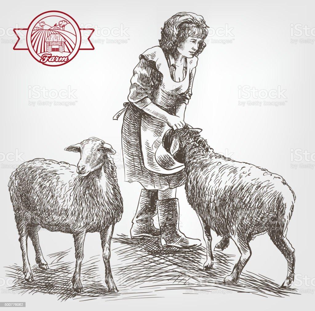 Élevage de moutons esquisse - Illustration vectorielle