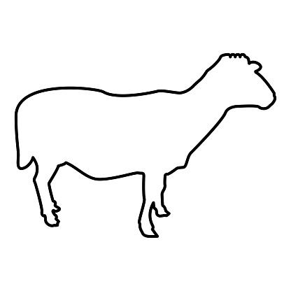 Sheep Ewe Domestic livestock Farm animal cloven hoofed Lamb cattle contour outline black color vector illustration flat style image