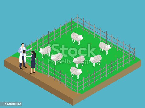 istock Sheep farm isometric 3d vector 1313955513