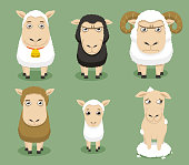 Sheep mood set collection, with different shapes and sizes ships, with white sheep, black sheep, sheep with horns, brown sheep, baby sheep, shaved sheep vector illustration.