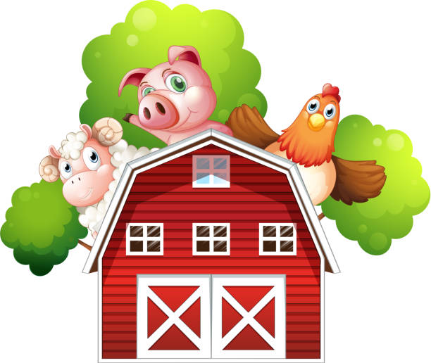 Sheep Pig And Chicken Hiding At The Back Of Barn Vector Art Illustration