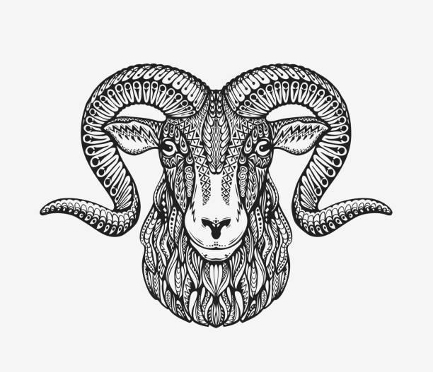 sheep, ram or mountain goat. animal decorated with ethnic patterns - bergziegen stock-grafiken, -clipart, -cartoons und -symbole