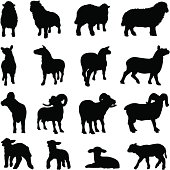 Sheep silhouette collection