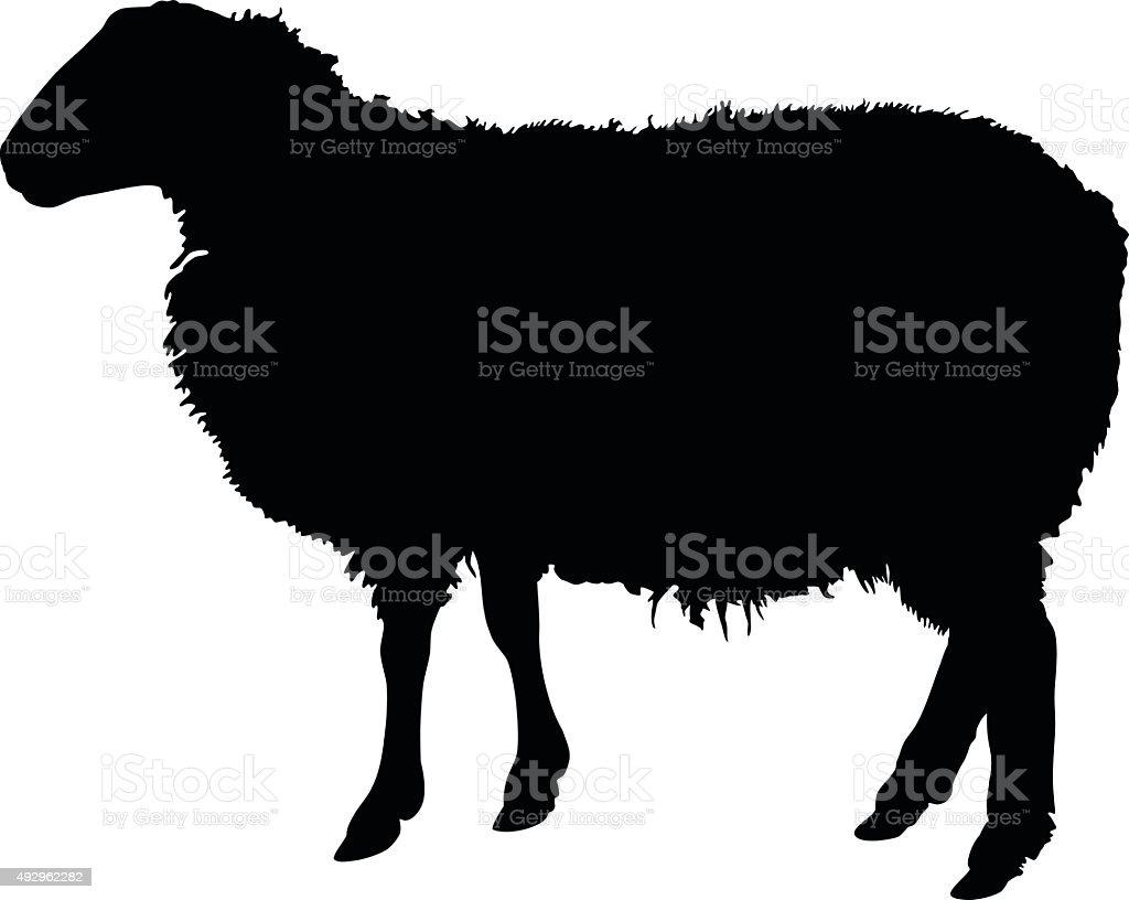 royalty free herd of sheep clip art vector images illustrations rh istockphoto com black sheep clipart images black sheep clip art free