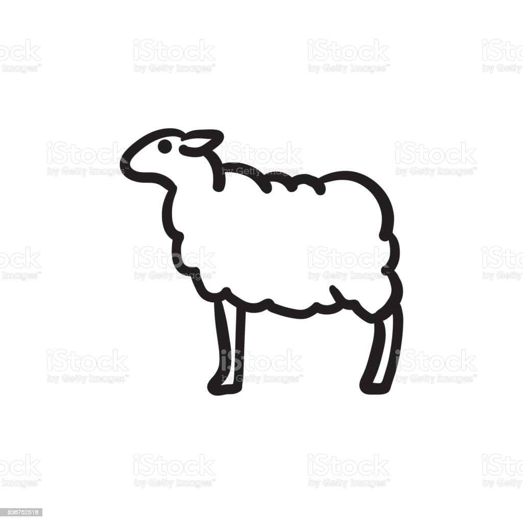 Moutons esquisse icône - Illustration vectorielle