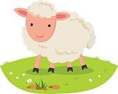 Sheep smiling