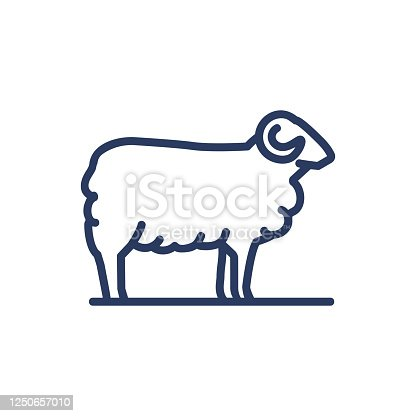 Sheep thin line icon. Pasture, herd, animal isolated outline sign. Diary product, farming, agriculture concept. Vector illustration symbol element for web design and apps