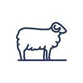 istock Sheep thin line icon 1250657010