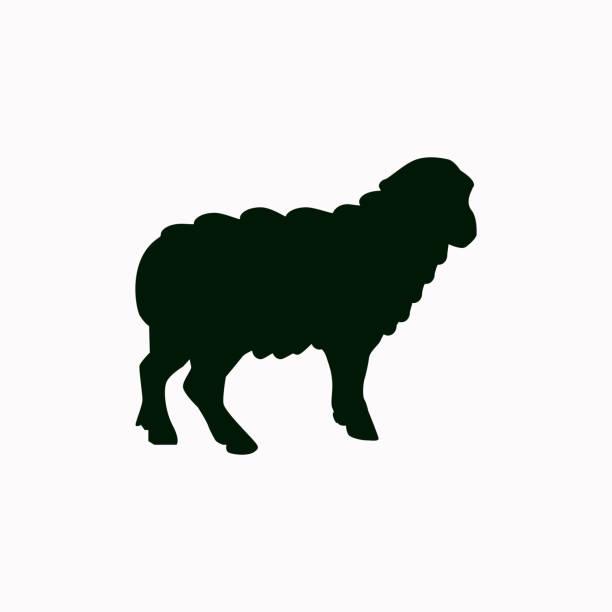 Moutons vector icon. - Illustration vectorielle