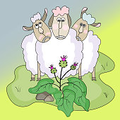 istock sheeps. domestic animals and plants.sheeps and burdock.funny vector illustration 1319446838