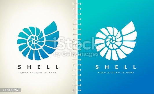 Shell. Mollusk vector. Design vector illustration.
