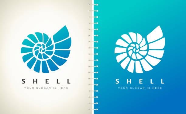 Shell. Mollusk vector. Design vector illustration. Shell. Mollusk vector. Design vector illustration. mollusk stock illustrations