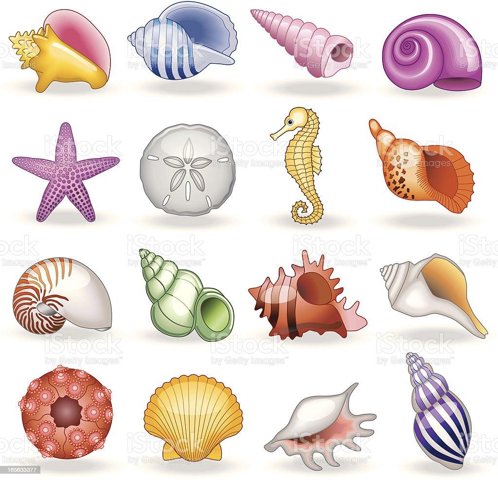 shell shop vector art illustration