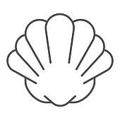 Starfish and seashells. Vector sketch  illustration.