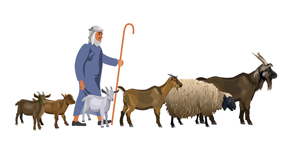 Shepherd with a herd of goats and sheep