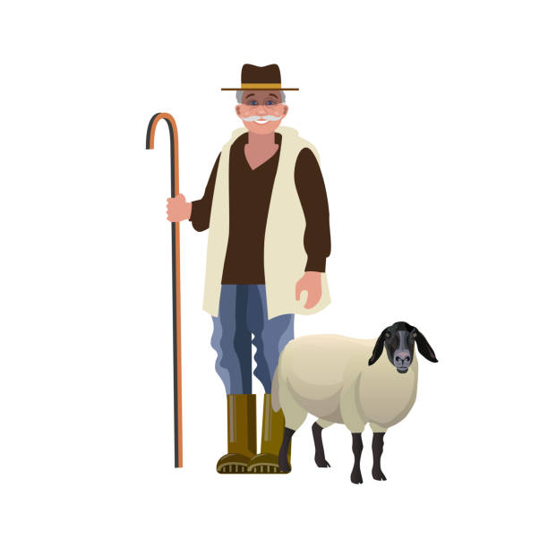 Shepherd with a sheep Portrait of a shepherd with a sheep. Vector illustration isolated on white background rancher illustrations stock illustrations
