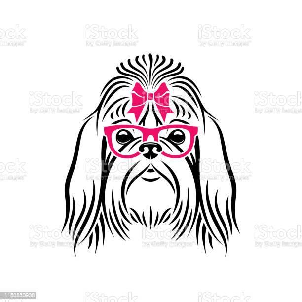 Shih tzu dog wearing eyeglasses isolated vector illustration vector id1153850938?b=1&k=6&m=1153850938&s=612x612&h=qt3s4fqklgmq dabhyrxqdda63x6hzzw iwrxkon5lm=