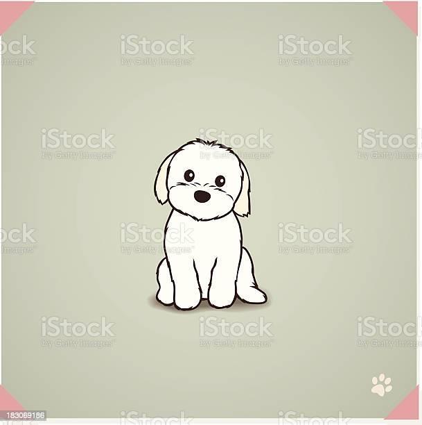 Shih tzu maltese mix puppy vector id183069186?b=1&k=6&m=183069186&s=612x612&h=2f4yk6iy k2 0smcq3h28snqfhypt4dtxpvvim 8az4=