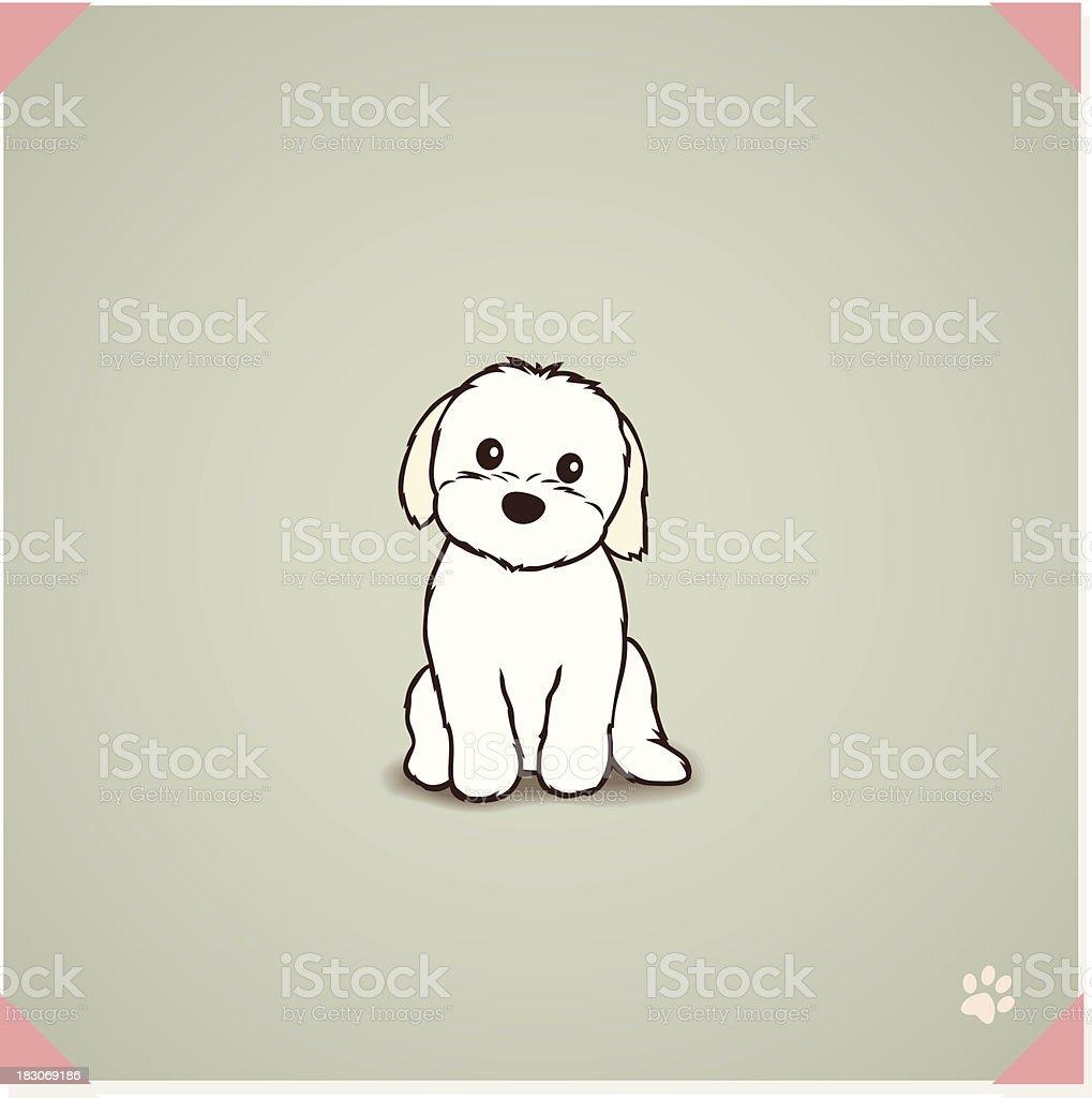 royalty free maltese clip art vector images illustrations istock rh istockphoto com fire maltese clipart maltese puppy clipart