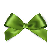 Shiny green satin ribbon on white background. Vector