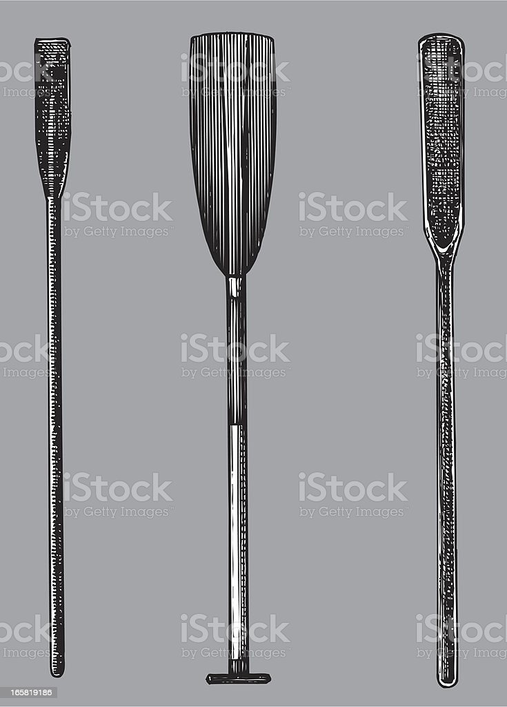 Ship Oars Paddles royalty-free stock vector art