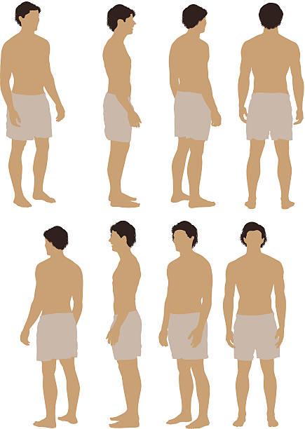 ilustrações de stock, clip art, desenhos animados e ícones de tronco nu homem posando - tronco nu