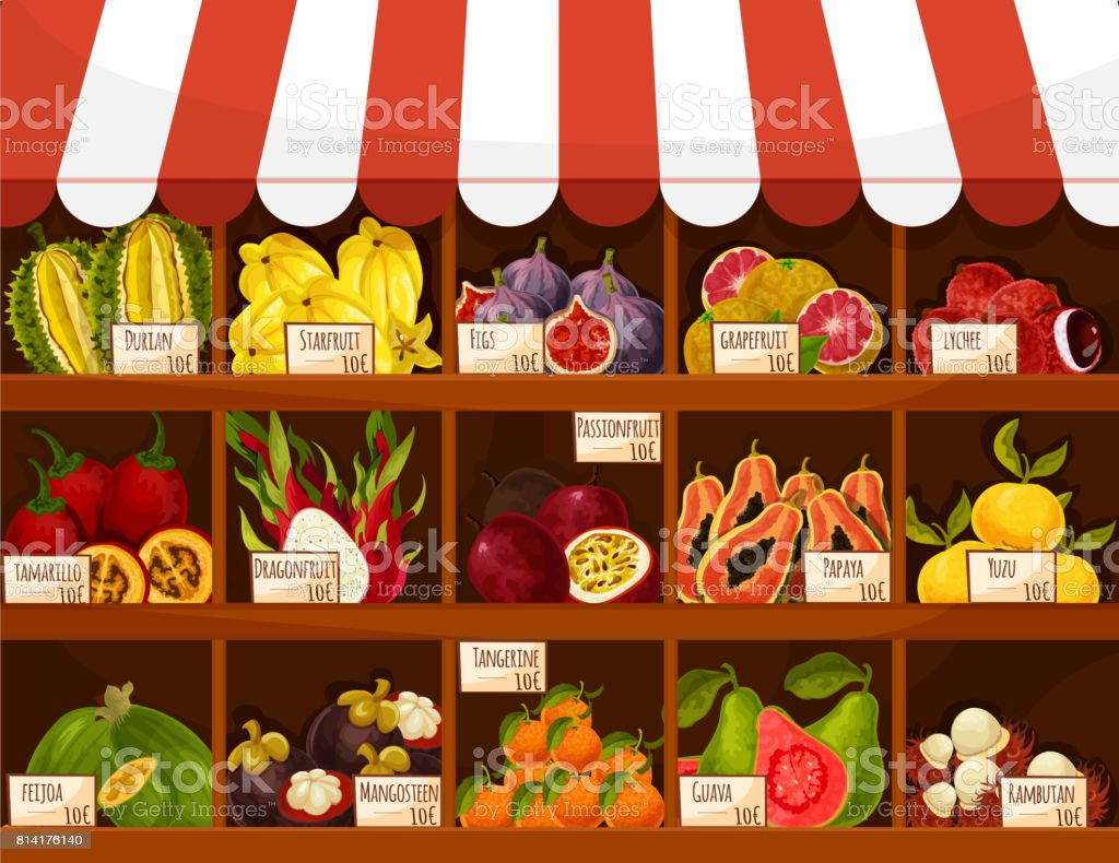 Shop or market vector stand display exotic fruits vector art illustration