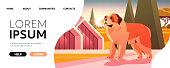 istock Short-haired saint bernard dog walking outdoor furry friend domestic animal concept full length horizontal 1346396925