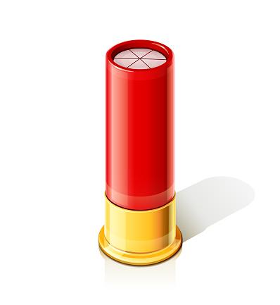 Shotgun for hunting gun. Ammunition for hunt at beast.