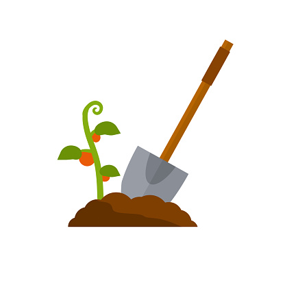 Shovel. Digging hole. Wood brown tool. Cartoon flat illustration. Element of farms and villages. Harvest. Pile of earth