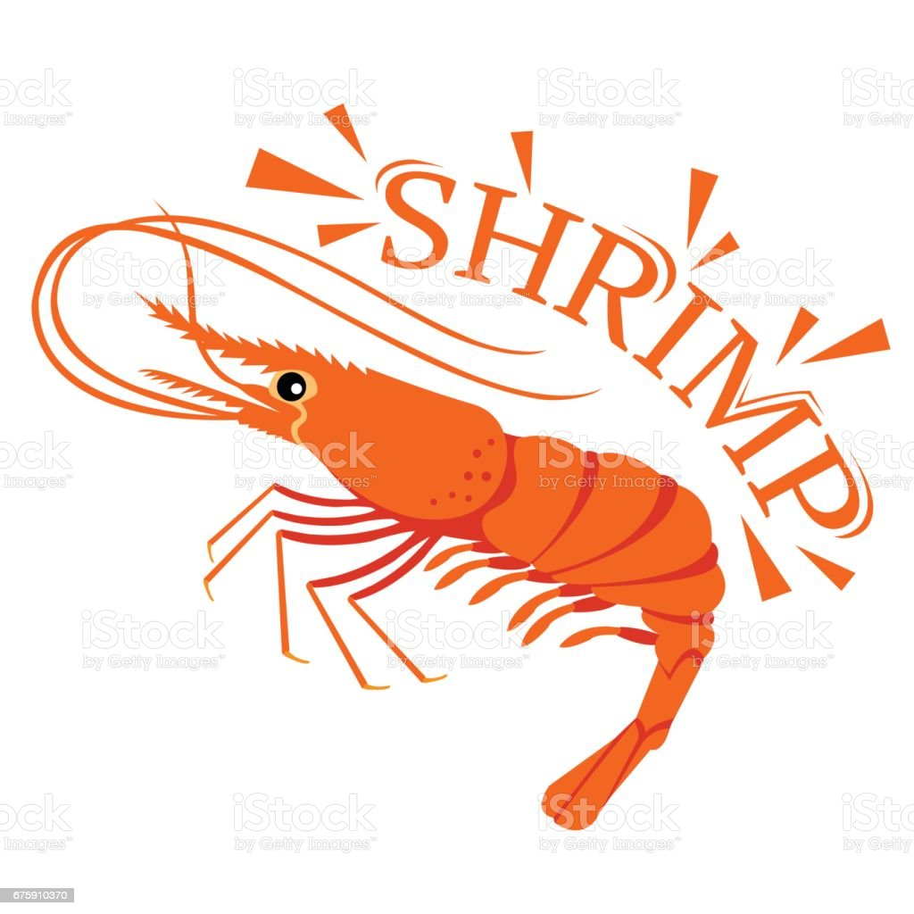 Shrimp cartoon with text for food flavor vector art illustration