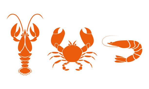 bildbanksillustrationer, clip art samt tecknat material och ikoner med räkor, languster och krabba ikoner. fisk och skaldjur designelement. vektor illustration. - räka fisk och skaldjur