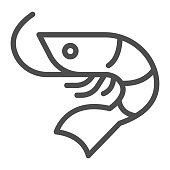 Shrimp line icon, Fish market concept, seafood sign on white background, Shrimp icon in outline style for mobile concept and web design. Vector graphics