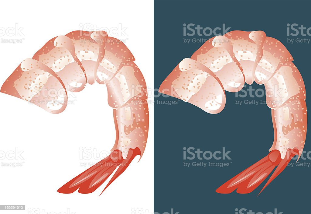 Shrimp meat vector art illustration