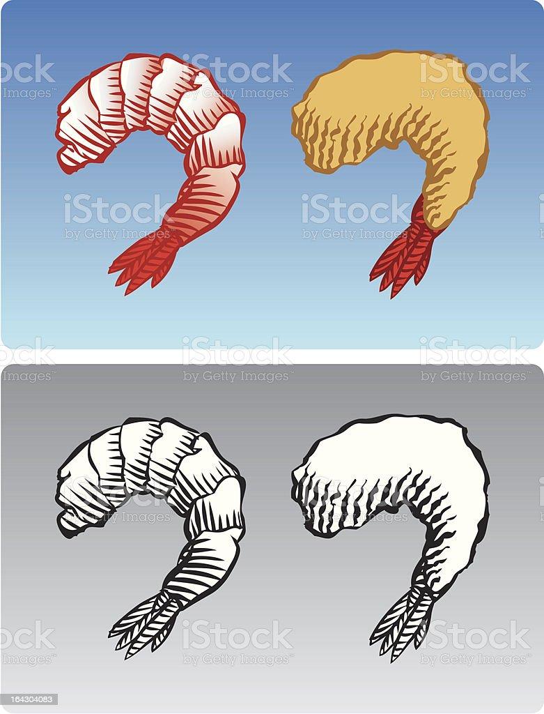 Shrimp royalty-free shrimp stock vector art & more images of animal