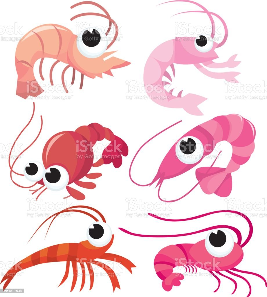 Shrimps & Prawns vector art illustration