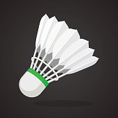 Shuttlecock for badminton from bird feathers